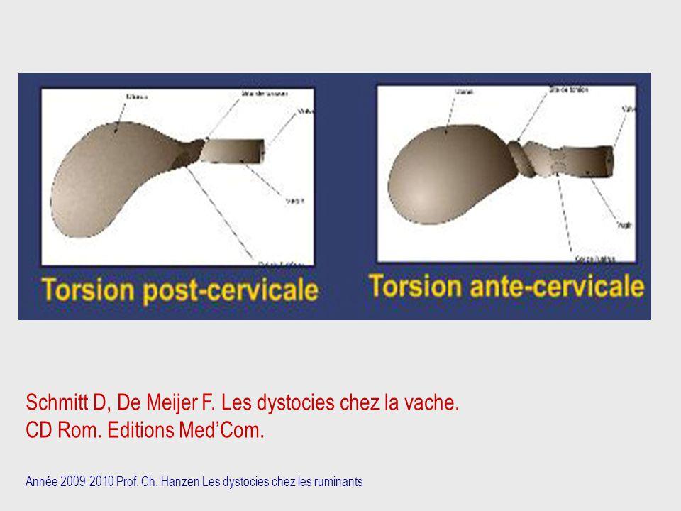 Schmitt D, De Meijer F. Les dystocies chez la vache.