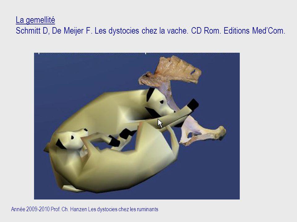 La gemellité Schmitt D, De Meijer F. Les dystocies chez la vache