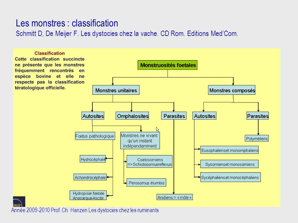Les monstres : classification Schmitt D, De Meijer F