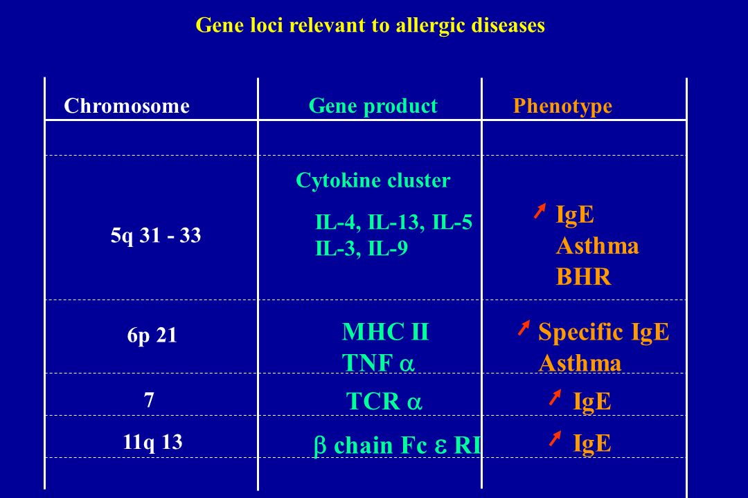Gene loci relevant to allergic diseases