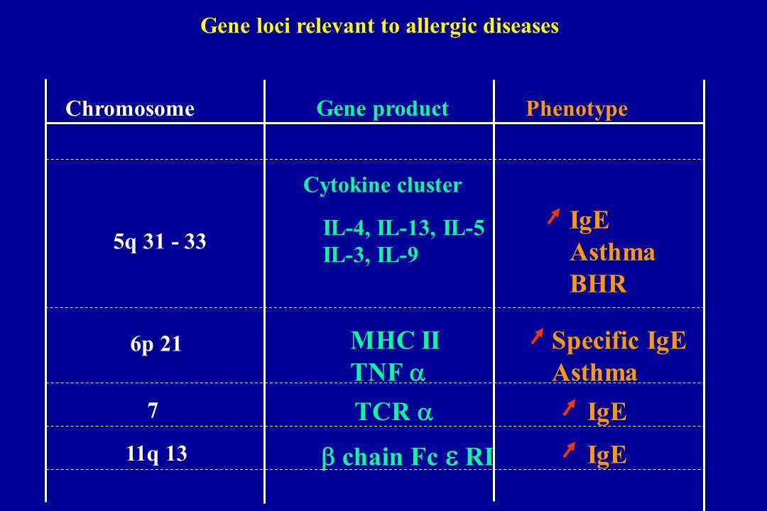 Gene loci relevant to allergic diseases
