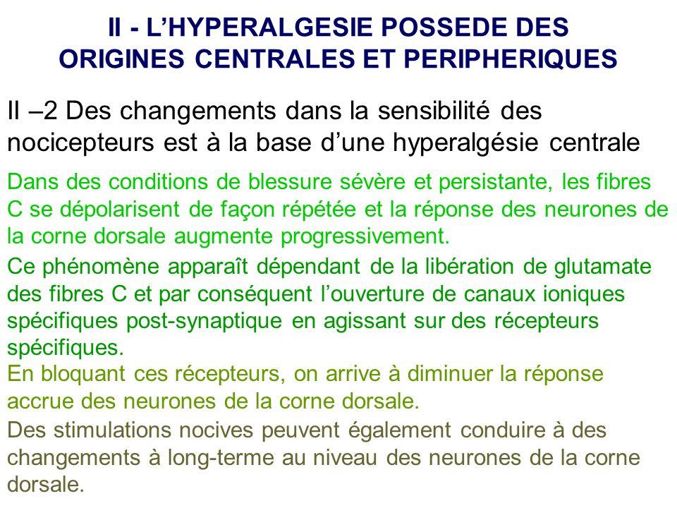 II - L'HYPERALGESIE POSSEDE DES ORIGINES CENTRALES ET PERIPHERIQUES