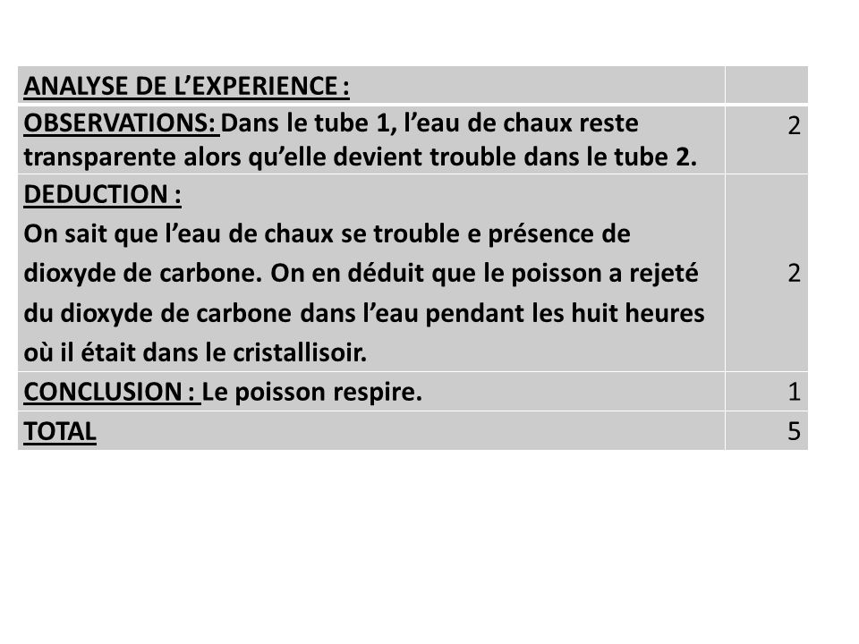 ANALYSE DE L'EXPERIENCE :