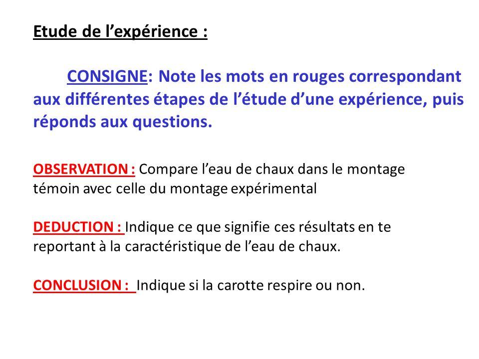 Etude de l'expérience :