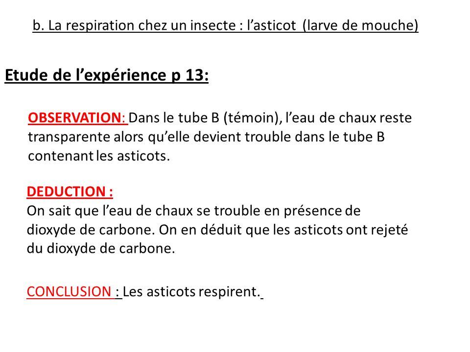 Etude de l'expérience p 13: