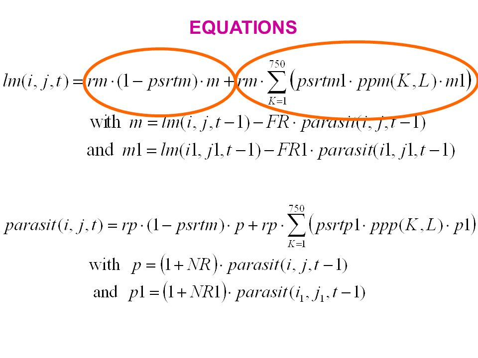 EQUATIONS This gives us 2 equations which were computed with MATLAB.