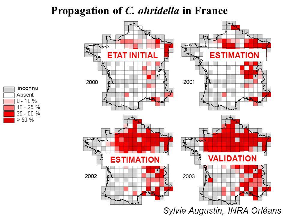 Propagation of C. ohridella in France