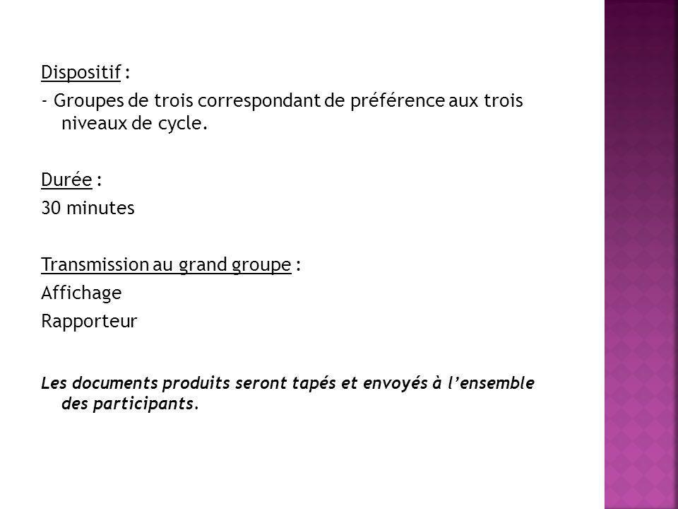 Transmission au grand groupe : Affichage Rapporteur