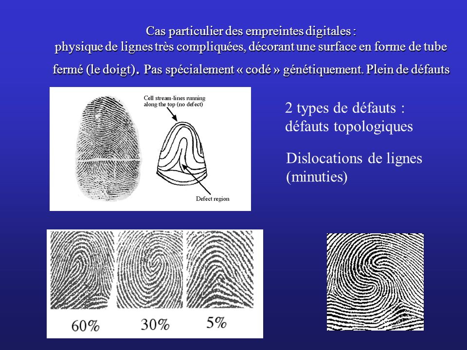 Dislocations de lignes (minuties)