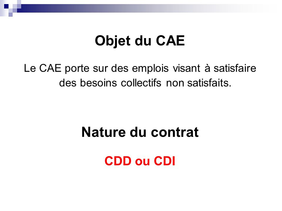 Objet du CAE Nature du contrat