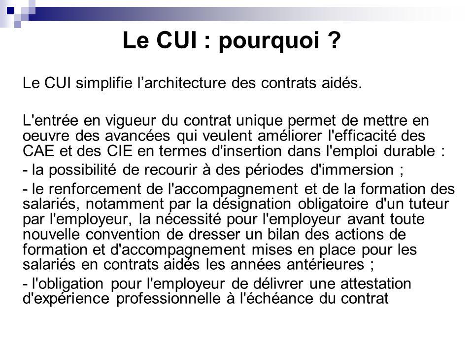 Le CUI : pourquoi Le CUI simplifie l'architecture des contrats aidés.