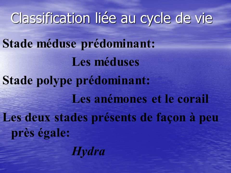 Classification liée au cycle de vie