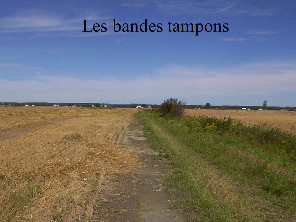 Les bandes tampons