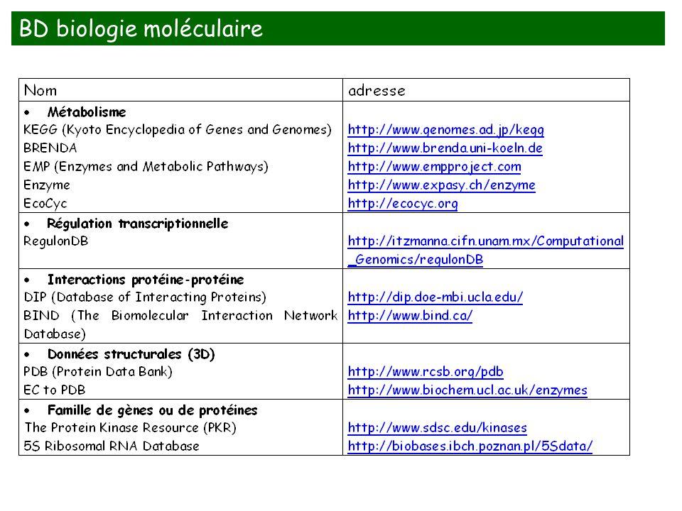 BD biologie moléculaire