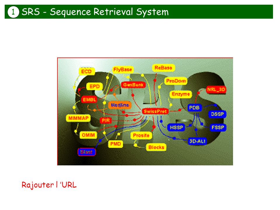 SRS - Sequence Retrieval System