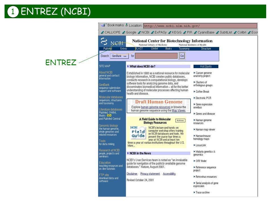 ENTREZ (NCBI) 1 ENTREZ