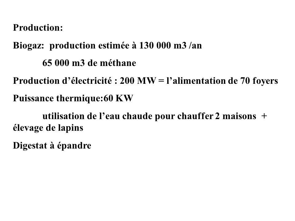 Production: Biogaz: production estimée à 130 000 m3 /an. 65 000 m3 de méthane. Production d'électricité : 200 MW = l'alimentation de 70 foyers.