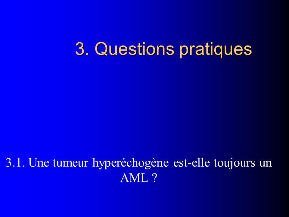 3.1. Une tumeur hyperéchogène est-elle toujours un AML