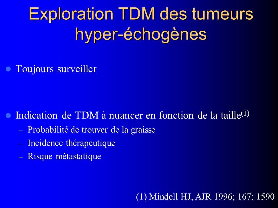 Exploration TDM des tumeurs hyper-échogènes