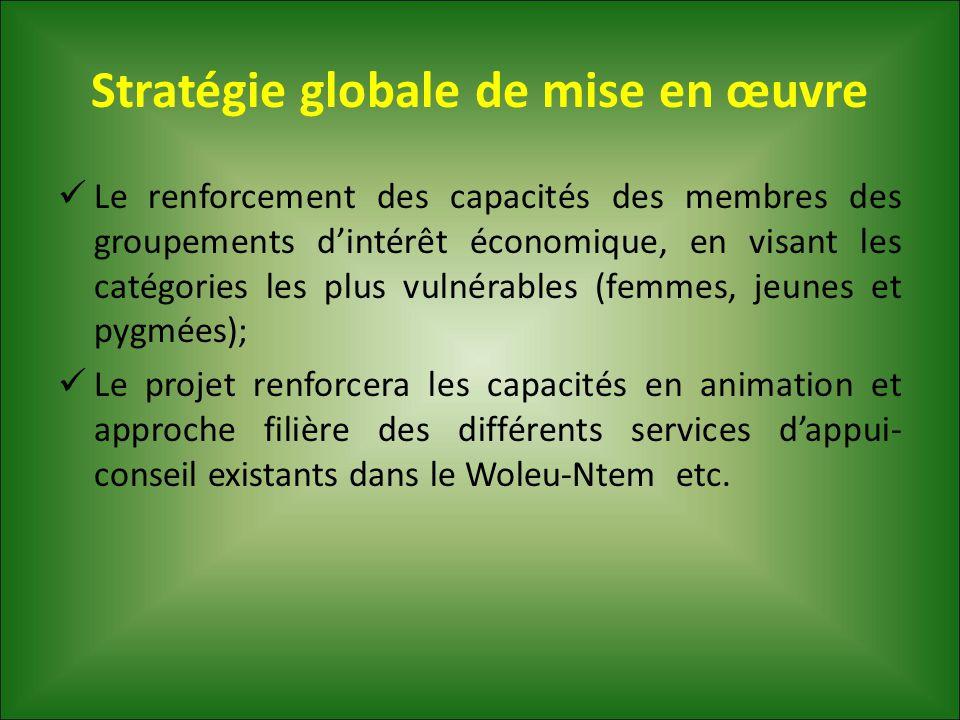 Stratégie globale de mise en œuvre