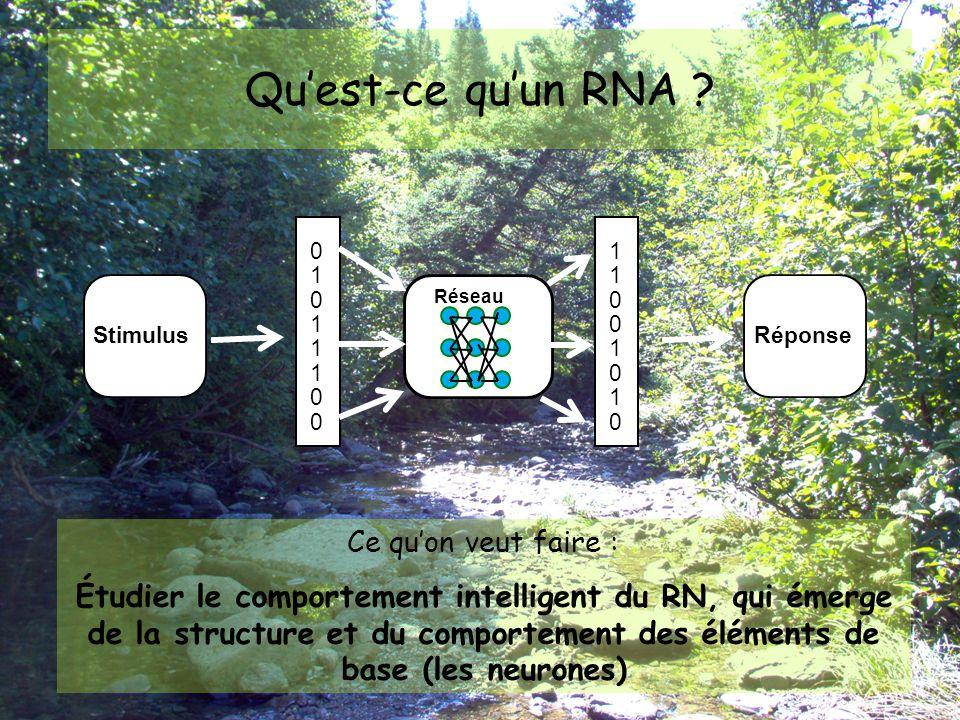 Qu'est-ce qu'un RNA 1. 1. 1. Réseau. 1. Stimulus. Réponse. 1. 1. 1. 1. Ce qu'on veut faire :