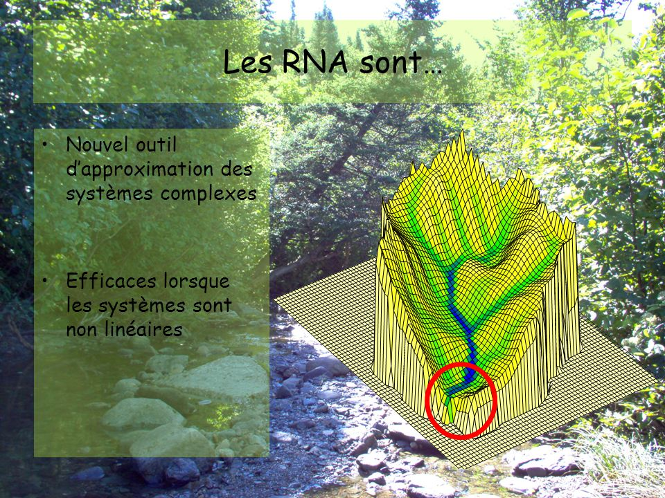 Les RNA sont… Nouvel outil d'approximation des systèmes complexes
