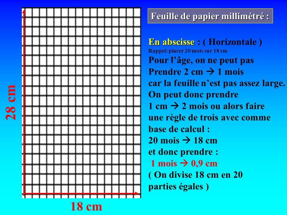 28 cm 18 cm Feuille de papier millimétré :