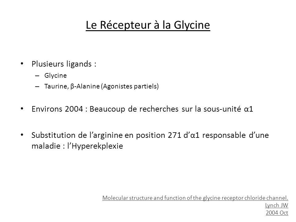 Le Récepteur à la Glycine