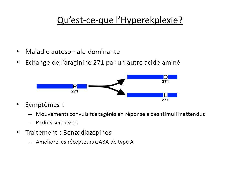 Qu'est-ce-que l'Hyperekplexie
