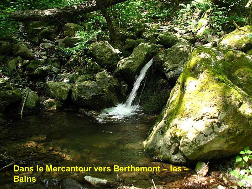 Dans le Mercantour vers Berthemont – les – Bains