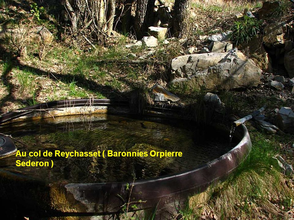 Au col de Reychasset ( Baronnies Orpierre Sederon )