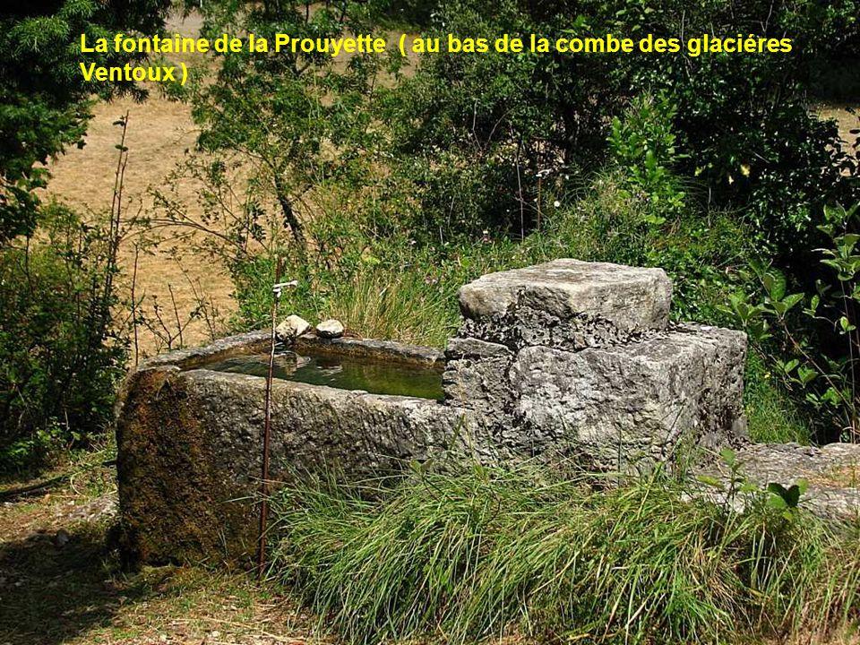 La fontaine de la Prouyette ( au bas de la combe des glaciéres Ventoux )