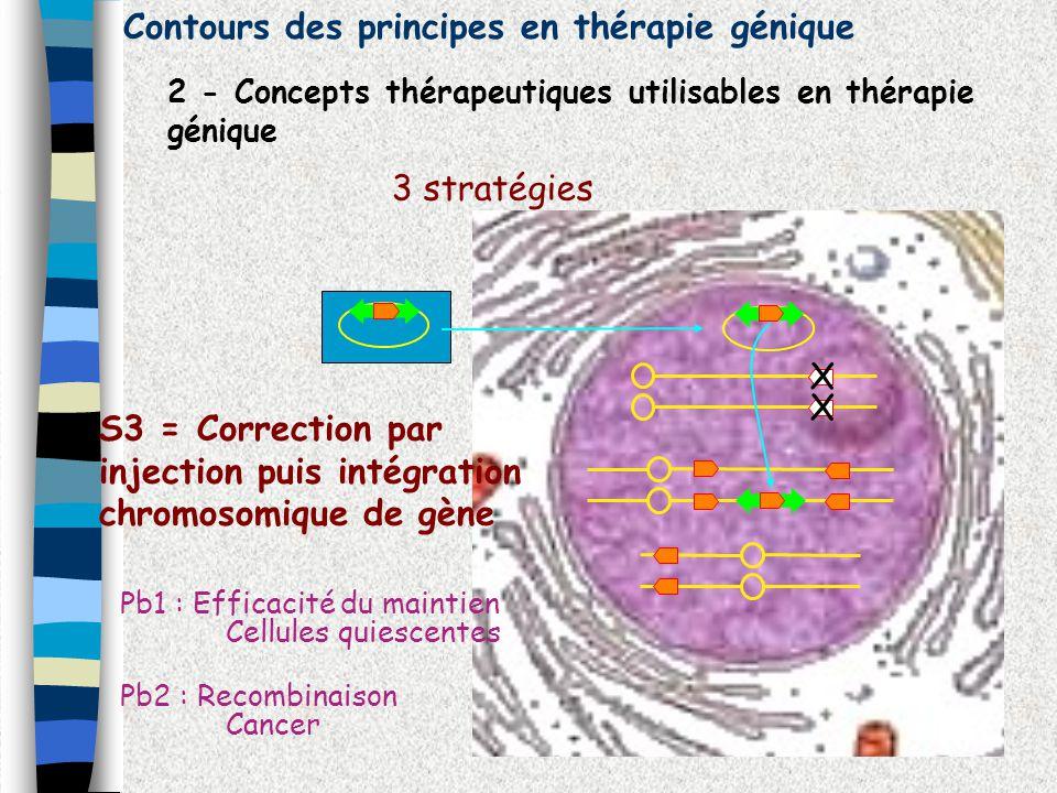 Contours des principes en thérapie génique