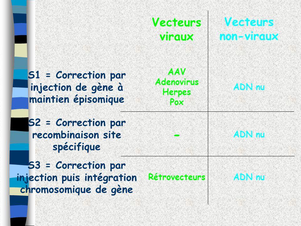 - Vecteurs viraux Vecteurs non-viraux