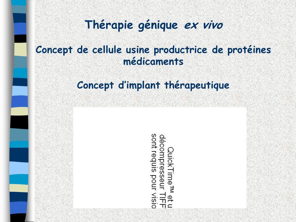 Thérapie génique ex vivo