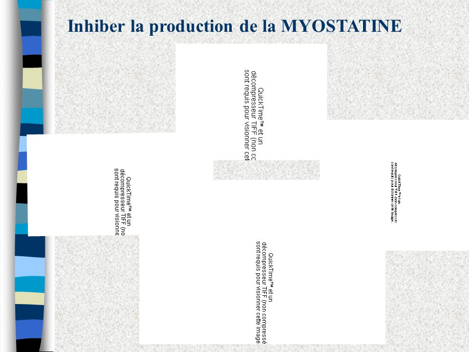 Inhiber la production de la MYOSTATINE