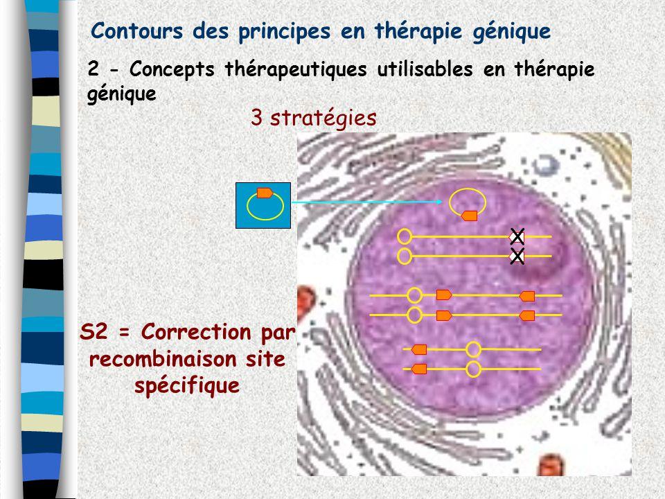 S2 = Correction par recombinaison site spécifique