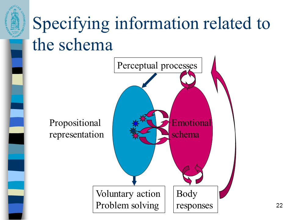 Specifying information related to the schema