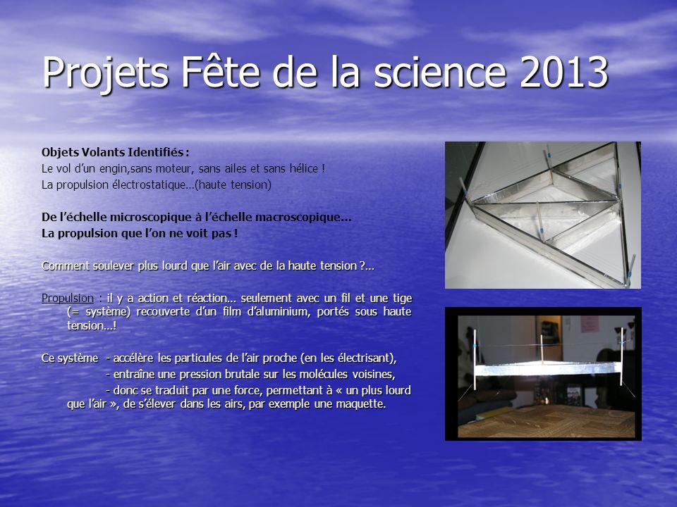 Projets Fête de la science 2013