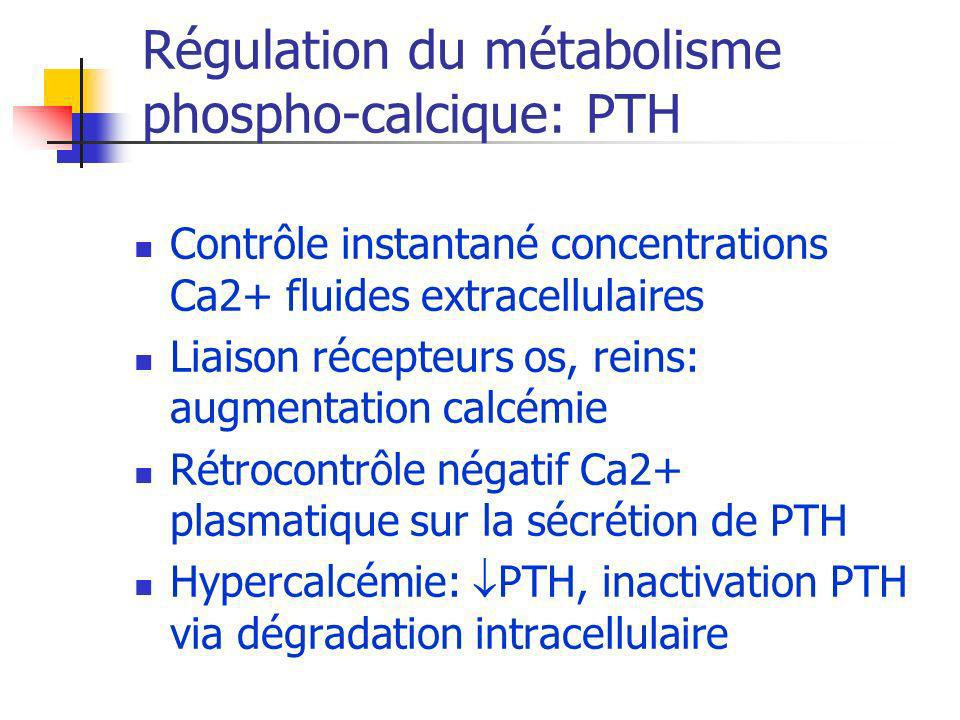 Régulation du métabolisme phospho-calcique: PTH