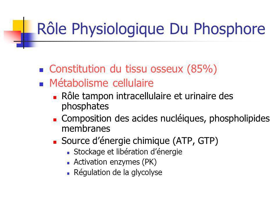 Rôle Physiologique Du Phosphore