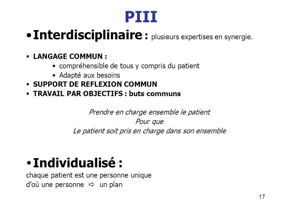 PIII Interdisciplinaire : plusieurs expertises en synergie.