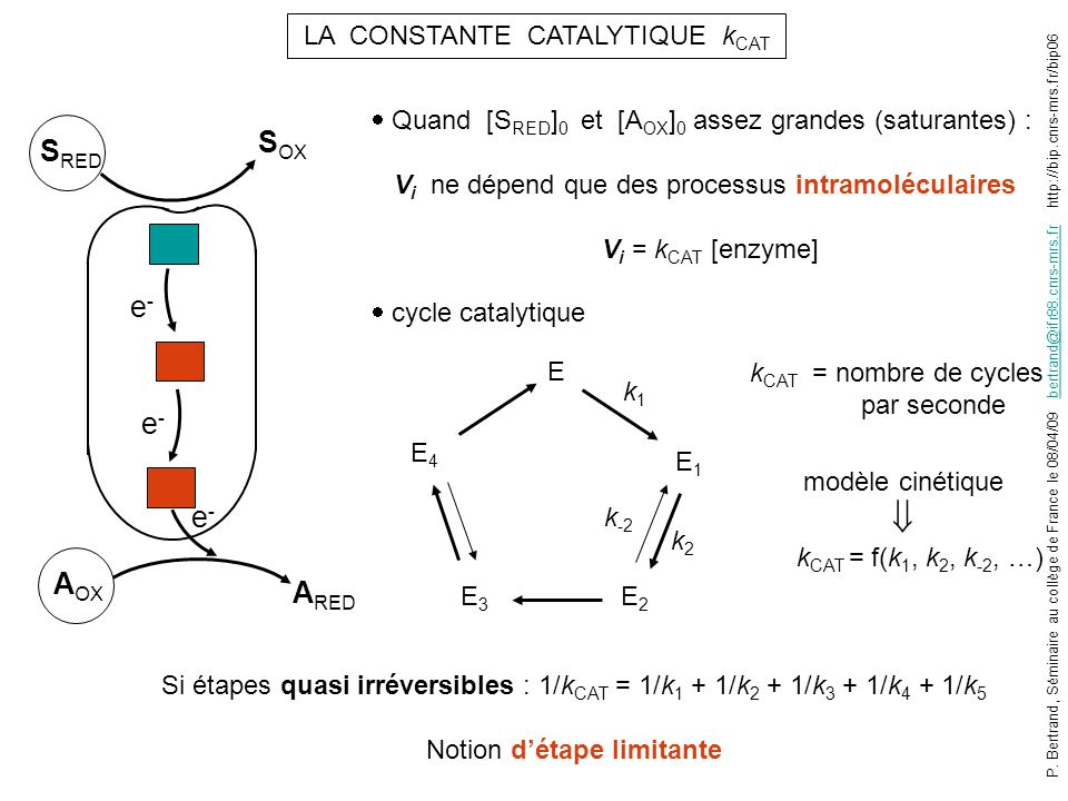 SOX SRED e- e- e- AOX ARED LA CONSTANTE CATALYTIQUE kCAT