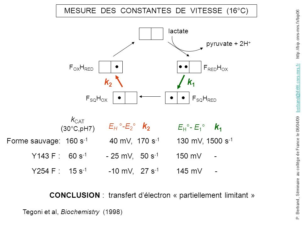 k2 k1 EH °-E2° k2 MESURE DES CONSTANTES DE VITESSE (16°C)      