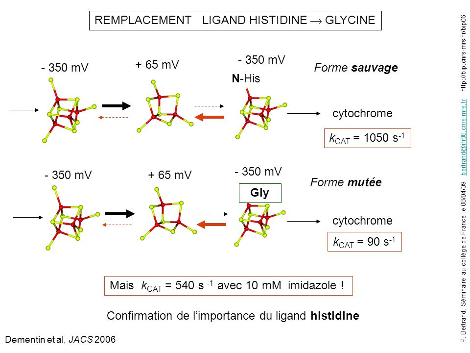REMPLACEMENT LIGAND HISTIDINE  GLYCINE
