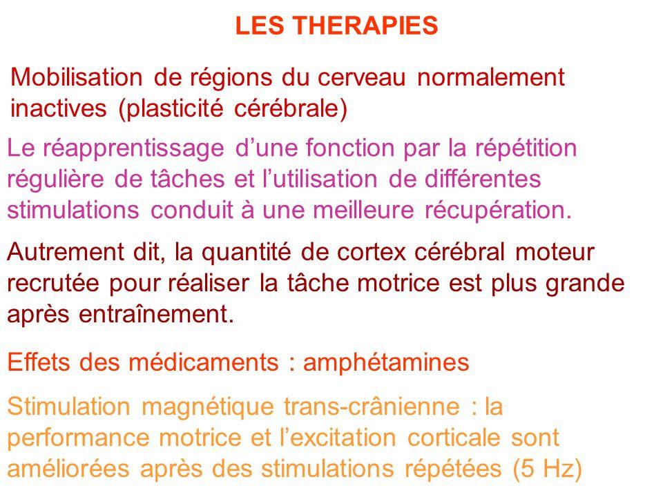 LES THERAPIES Mobilisation de régions du cerveau normalement inactives (plasticité cérébrale)