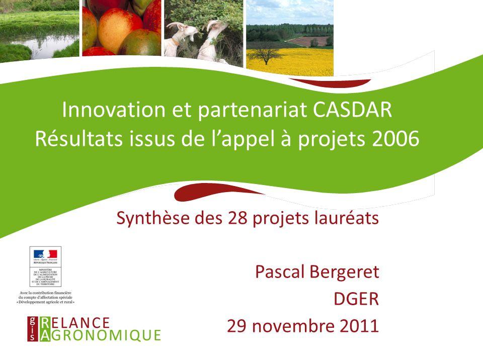 28/11/11 Innovation et partenariat CASDAR Résultats issus de l'appel à projets 2006. Synthèse des 28 projets lauréats.
