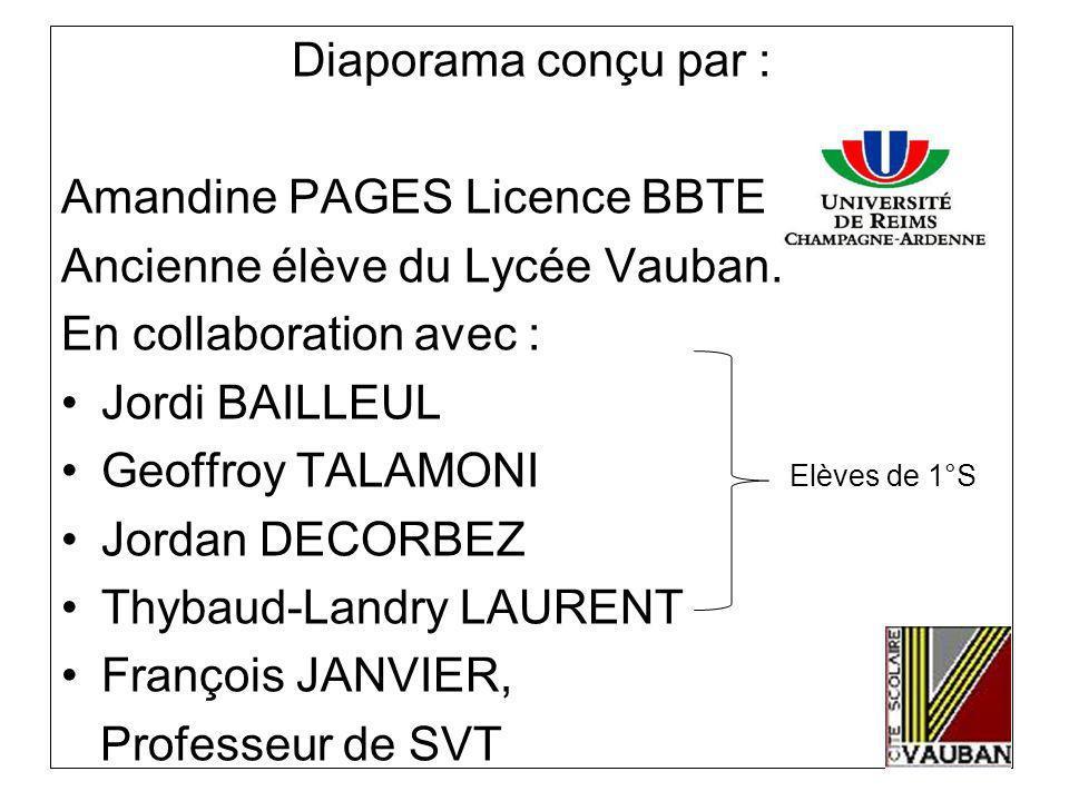Diaporama conçu par : Amandine PAGES Licence BBTE. Ancienne élève du Lycée Vauban. En collaboration avec :