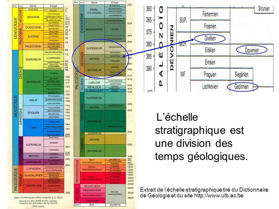 L'échelle stratigraphique est une division des temps géologiques.