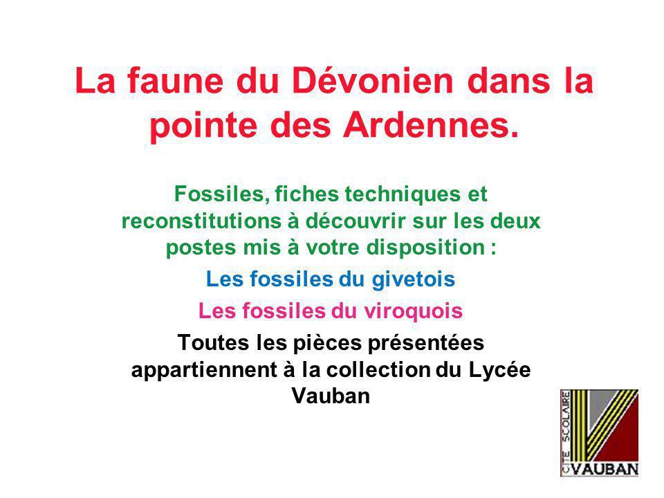 La faune du Dévonien dans la pointe des Ardennes.